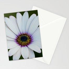 Blue Eyed Daisy II Stationery Cards