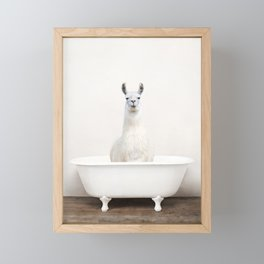 llama in a Vintage Bathtub (c) Framed Mini Art Print