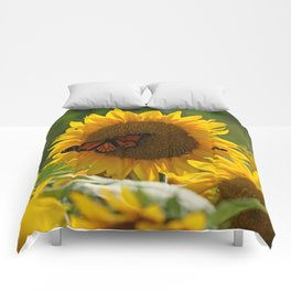 The butterfly the bee and the sunflower Comforters