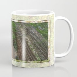 STOUT GROVE REDWOODS 4 LOOKING UP INTO THE TREES Coffee Mug