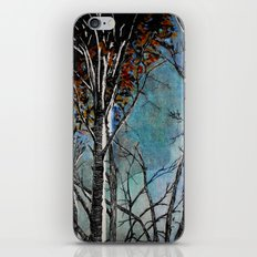Land of the Silver Birch iPhone & iPod Skin