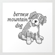 Dog Breeds: Bernese Mountain Dog Art Print