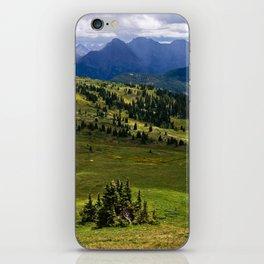 Wilderness Ahead iPhone Skin