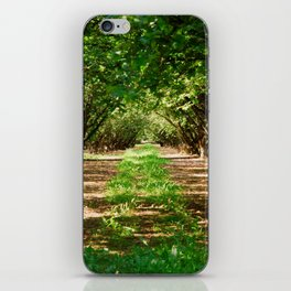 Walnut Grove iPhone Skin