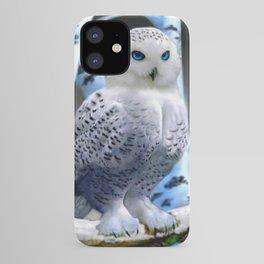 Blue-eyed Snow Owl iPhone Case