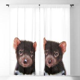 Baby Tasmanian Devil, Baby Animals Art Print By Synplus Blackout Curtain