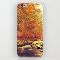 Out of Doors iPhone & iPod Skin