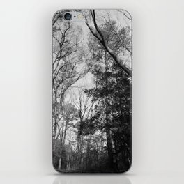 The forest canopy in a winter sky iPhone Skin