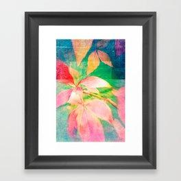 Autumn Pastels 01 Framed Art Print