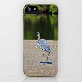 Where Do You Think You're Going iPhone Case