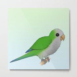 Curious parrot Metal Print