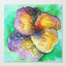 watercolor pansy Canvas Print