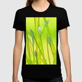 Allium 144 T-shirt