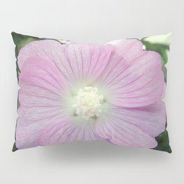 Pink Musk Mallow Pillow Sham