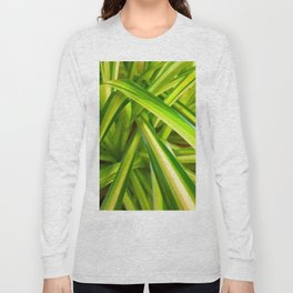 Spider Plant Leaves Long Sleeve T-shirt