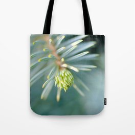 Tip of the fir tree branch Tote Bag