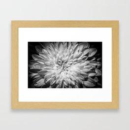 WX3 Framed Art Print