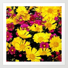 FUCHSIA PINK GARDEN YELLOW COREOPSIS FLOWERS Art Print