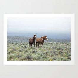 Wild Horses - Steens No. 1 Art Print