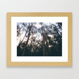 Forest Run Framed Art Print