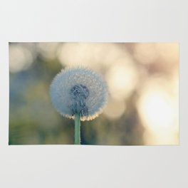 Dandelion blossom defocused seed head Rug