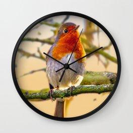 Dawn Chorus Wall Clock