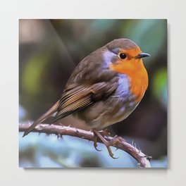 Plump Robin Perched On A Branch Metal Print