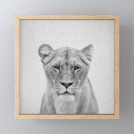 Lioness - Black & White Framed Mini Art Print
