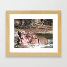 Hippo Fight Framed Art Print