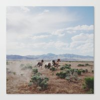 horse Canvas Prints featuring Running Horses by Kevin Russ