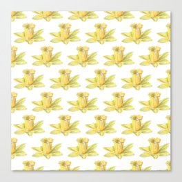 daffodils flowers pattern Canvas Print