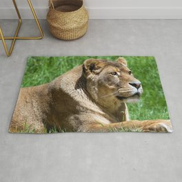 Adorable Fantastic Female African Lion Lying Down In Green Grass Close Up Ultra HD Rug