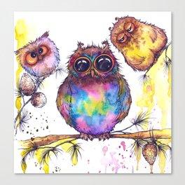 Funny owls watercolor illustration Canvas Print