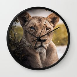 Lion nature Wall Clock