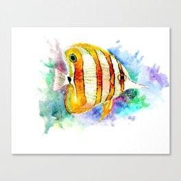Coral Aquarium Fish, Angelfish yellow copper angelfish design aquatic coral reef Canvas Print