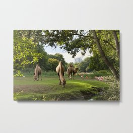 a momentary lapse of reason Metal Print