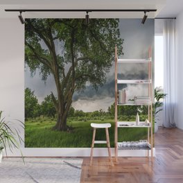 Big Tree - Tall Cottonwood and Passing Storm in Texas Wall Mural