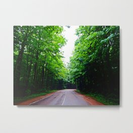 Winding Road in Forest Metal Print