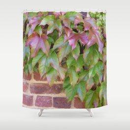 Feuilles sur Briques  Shower Curtain