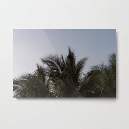 Palm trees during Sunset   Ao nang, Thailand   Art print photography Metal Print