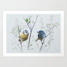 2 birds in tree Art Print