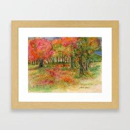 Autumn Woodlands Framed Art Print