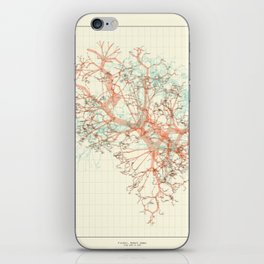 Arbor Ludi: Fischer iPhone Skin