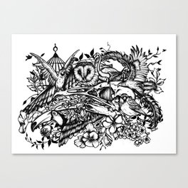 Bird's Canvas Print