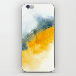 Improvisation 64 iPhone Skin