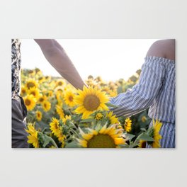 Couple holding hands in a sunflower field Canvas Print