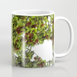 Large spruce fresh shoots Coffee Mug