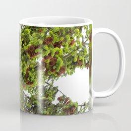 Large spruce fresh shoots Coffee Mug