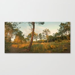 Goodnight Sun ! Canvas Print