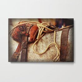 Ropes and Harness Metal Print